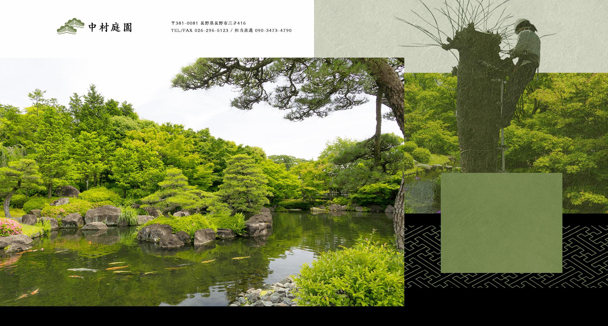 伝統的な剪定技術が織り成す、風情ある庭木 見るものを魅了する仕上がりが違います
